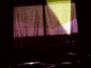 nmkt-night-window-vert2